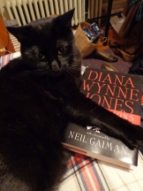 Reflections on the Magic of Writing - Diana Wynne Jones